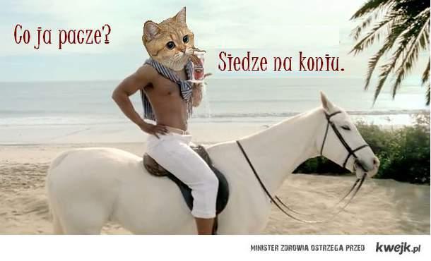 co ja na koniu?