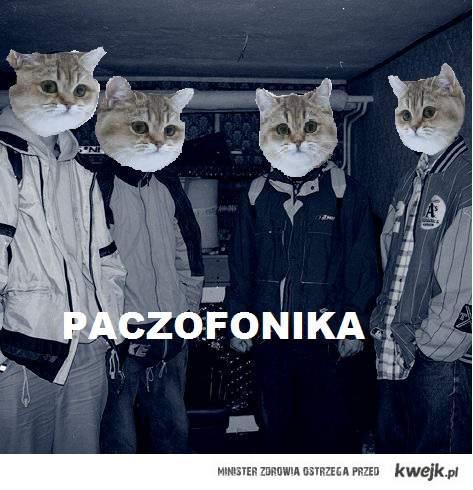 Paczofonika