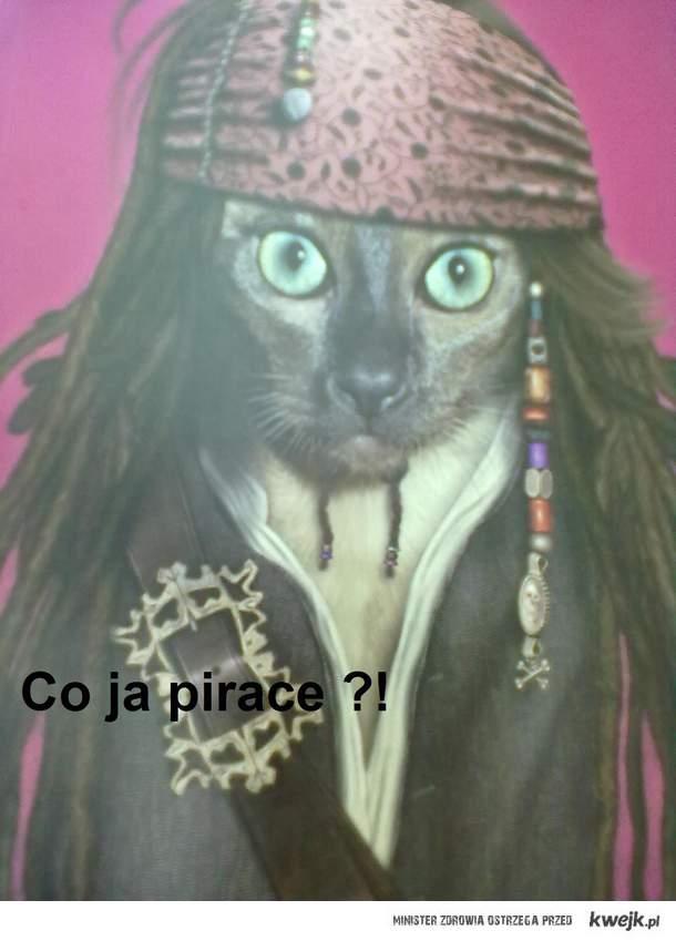 Co ja Pirace ?!
