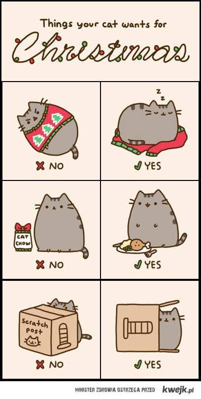 kot i świąteczne prezenty