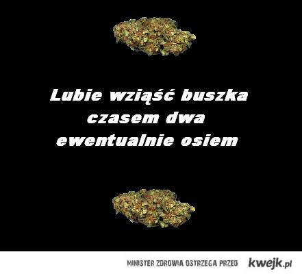 Buszek