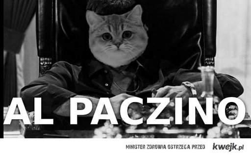 Al Paczino aka Co ja Pacze