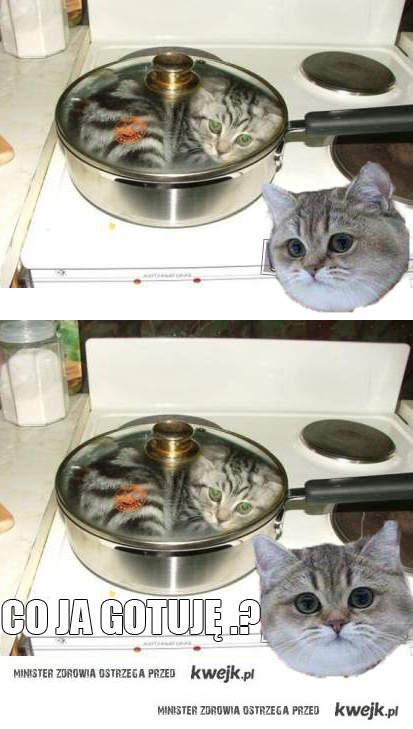 Co ja gotuje