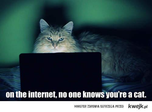 Nikt nie wie że jesteś kotem