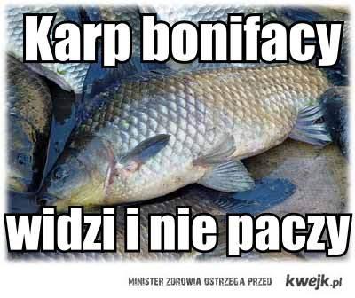 Karp Bonifacy,pobrano z karachan.org