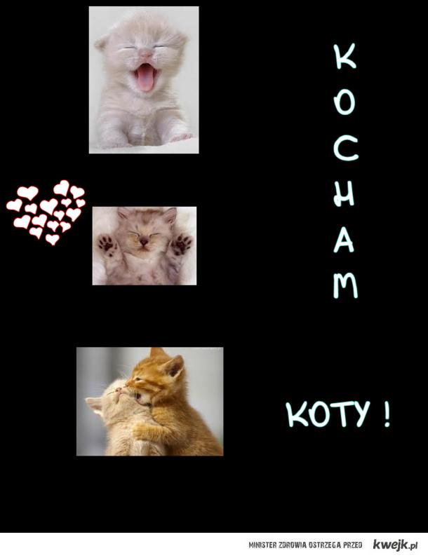 Kooty !