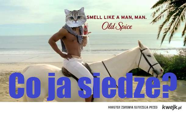 co ja siedze