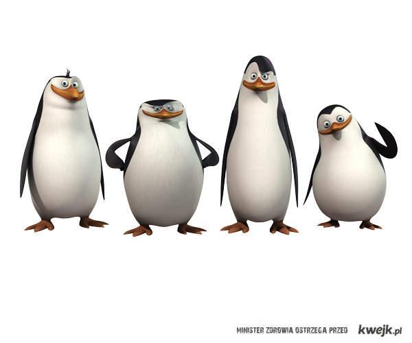 pingwiny z Madagaskaru<3