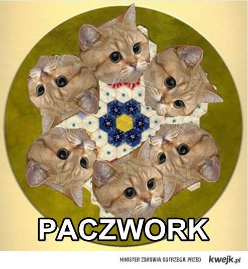 PACZWORK