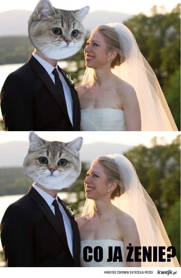 Co ja żenie?