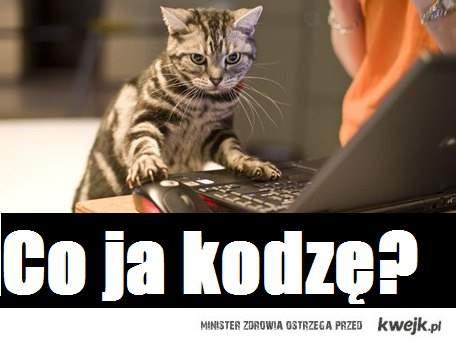 co_ja-kodze