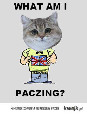 What Am I Paczing?