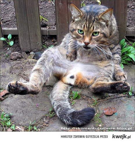 I've got a hangover...