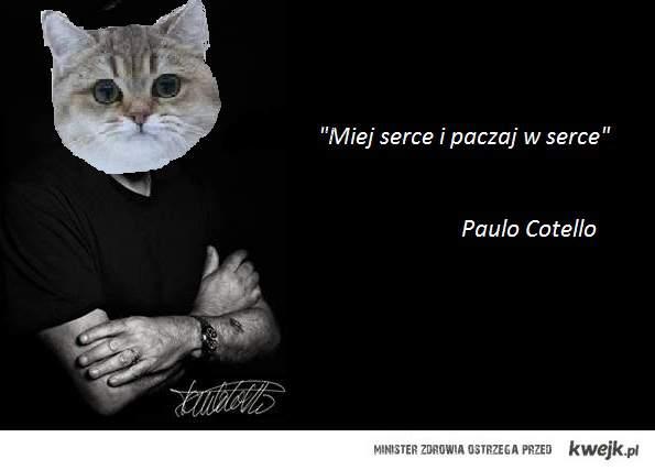 Cotello