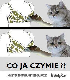 Co ja czymie