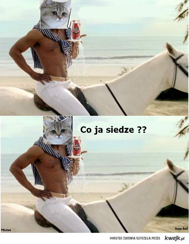 Co ja siedze ?