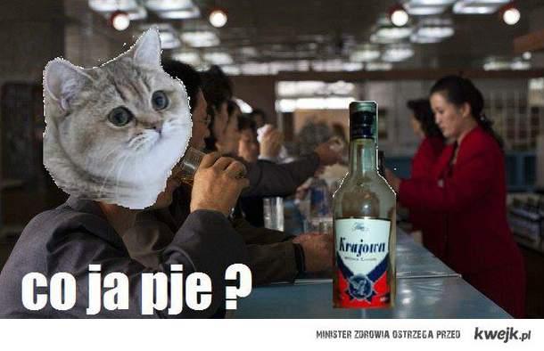 co ja pje ?