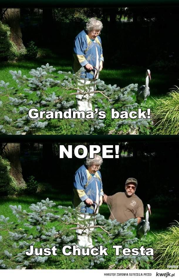 Grandma's back