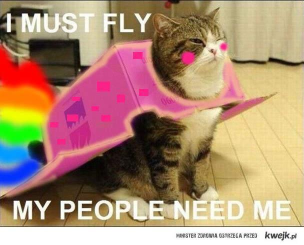 Nyan Cat ;D