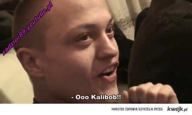 Ooo Kalibob