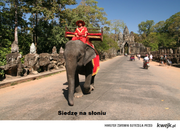 Siedzę na słoniu