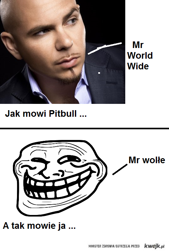 Mr worldwide