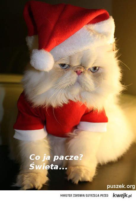 Co ja pacze? Święta...