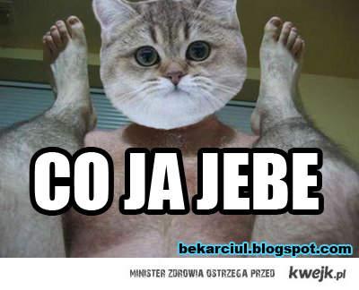 cojajebe