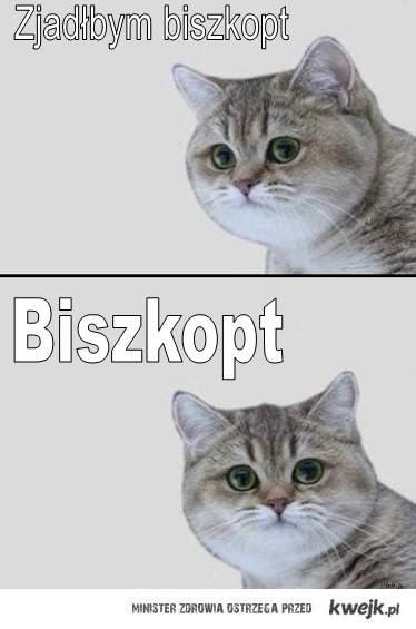 Biszkopt