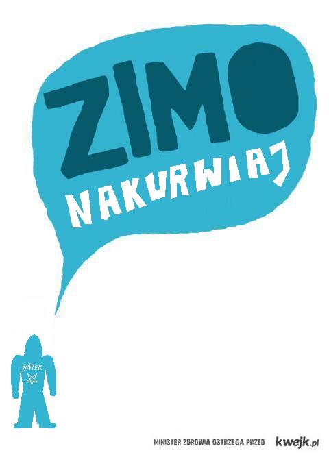 ZimaSlayer