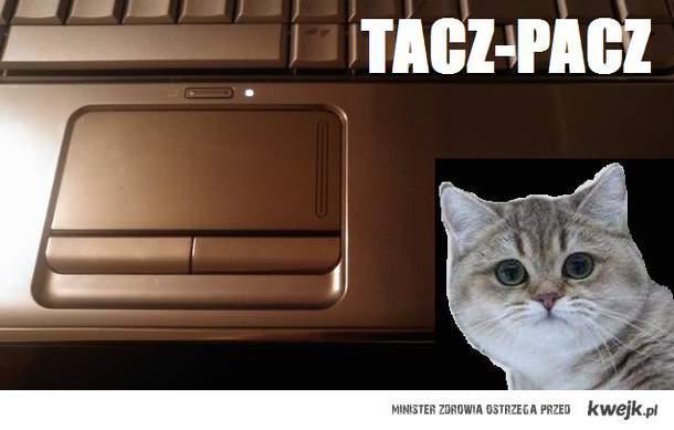 TACZ-PACZ