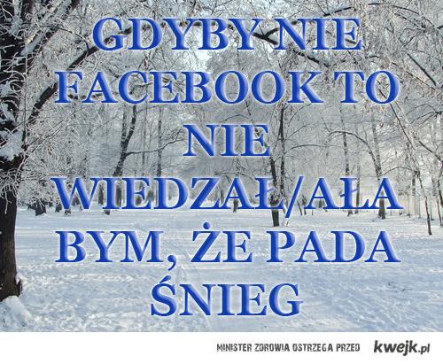 facebookBOSS