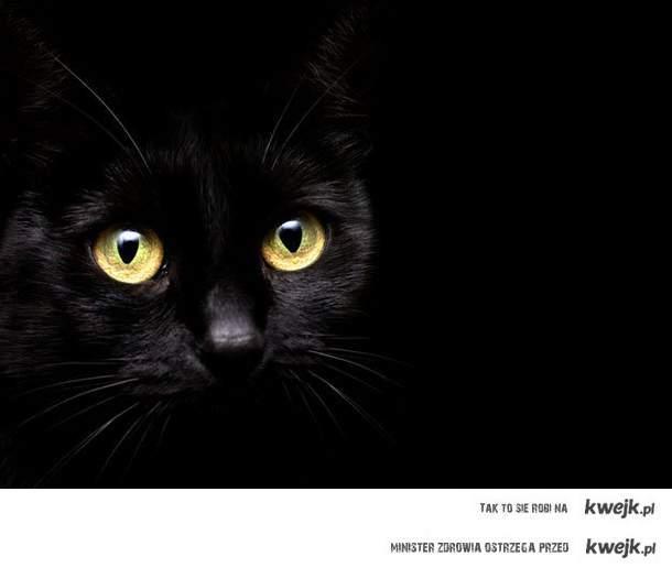 Jestem czarny. Ale to nie znaczy że ty mnie nie widzisz a ja ciebie widze