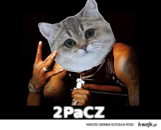 2PaCZ