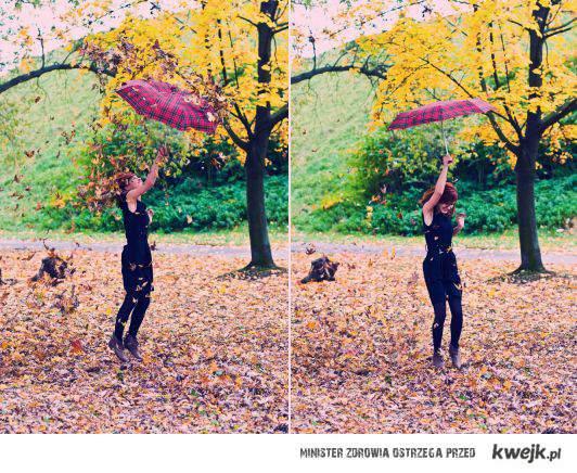 kolorowy deszcz liści
