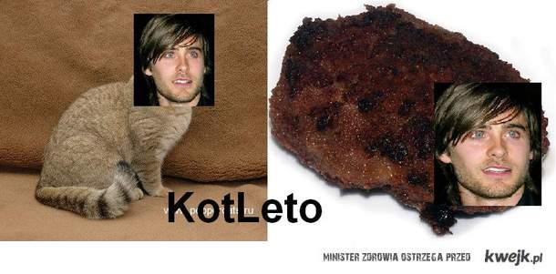 KotLeto