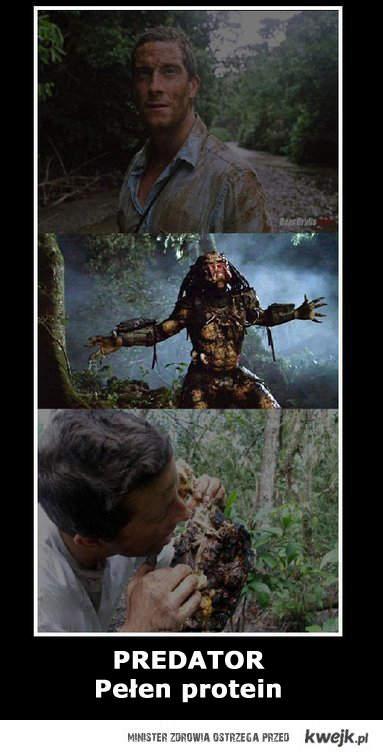 predator i grylls