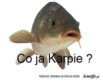 Co ja karpie ?