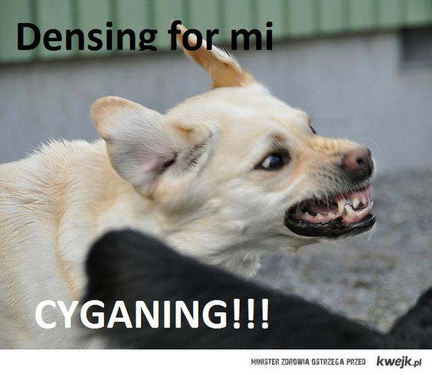 DENSING