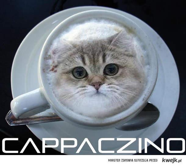 capaczino