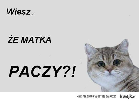 Wiesz, że matka Paczy?!