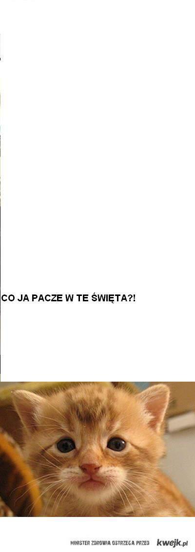 PACZE?!