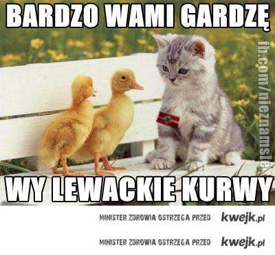 lewacko hitlerowskie