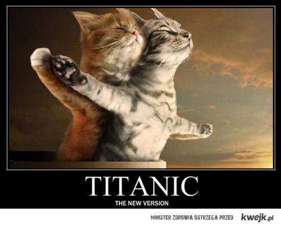 Koci Titanic <3