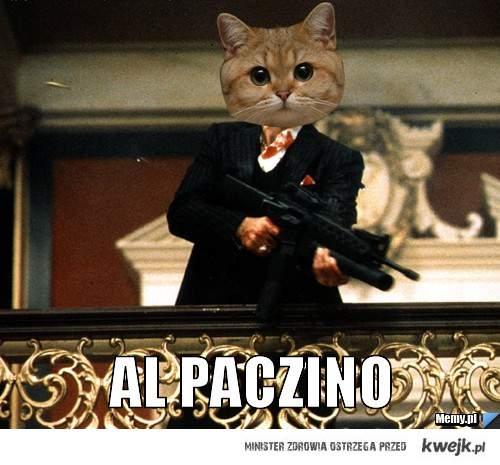 alpaczino