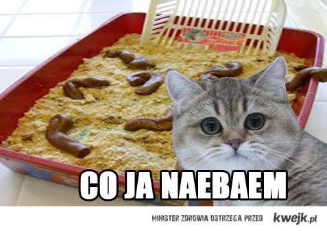 naebaem