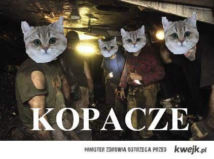 kopacze
