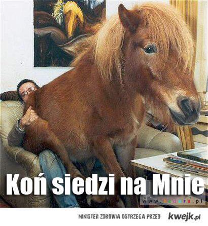 Koń siedzi na Mnie :)