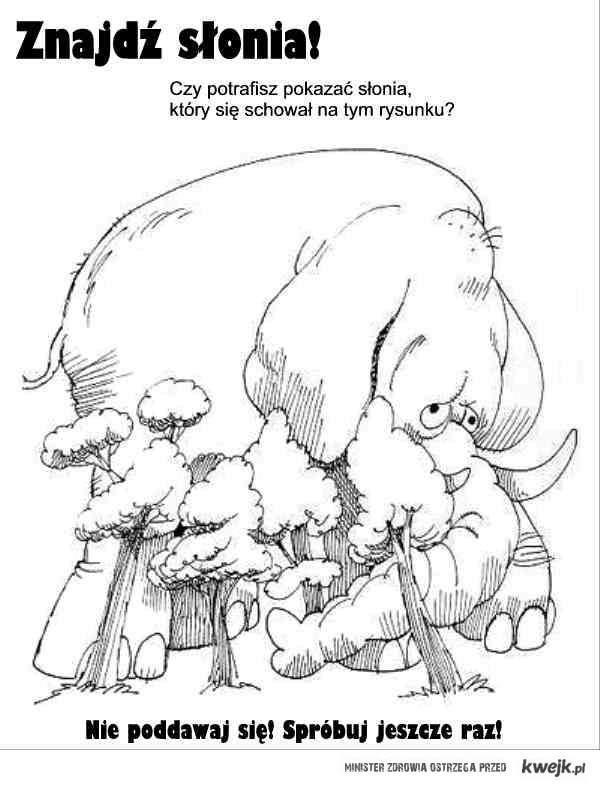 Znajdź słonia.