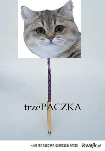 trzePACZKA